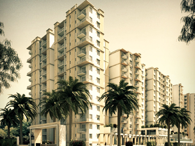 Prestige Group - Pine Wood